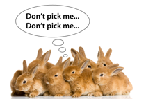 dont_pick_me_bunnies